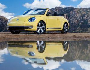beetleconvreflect